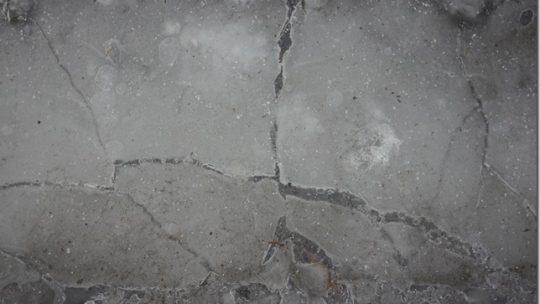 酒造り真っ最中冬の栗山、平成25年11月30日の【造り酒屋をもっと知る会 その141】は『心あったまるTAKU飲みフルコース・ランチ』